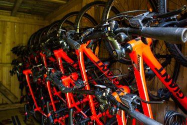Czerwone rowery Giant